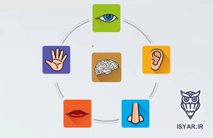 تقویت حافظه پنج گانه