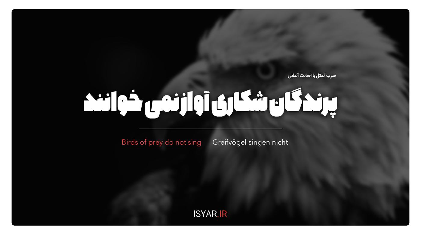 پرندگان شکاری آواز نمی خوانند.